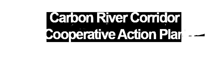 Pierce County Parks - Carbon River Corridor Cooperative Action Plan